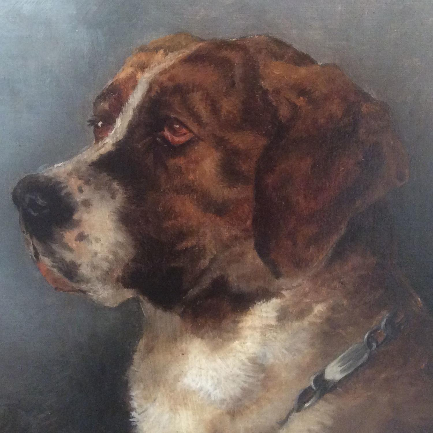 19th Century English School Portrait of a St. Bernard